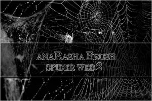 spider web brush 2 by anaRasha-stock
