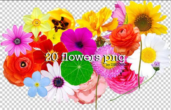 Flowers png + by Discopada