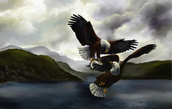 Eagles in Newfoundland by isisandwolf