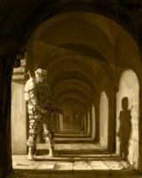 The Soldier and the Arches by tomsymonds