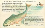 Pisces - Big Fish Horoscope Card by Yesterdays-Paper