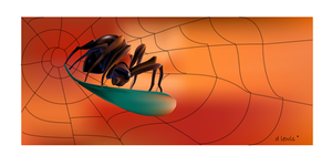 Surfing the web by Hagge