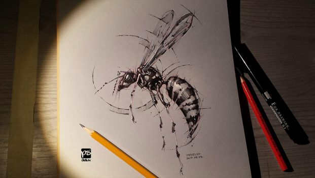 Wasp Sketch Timelapse Psdelux by psdeluxe