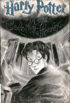 Harry Potter and The Order of the Phoenix by jey2dworld