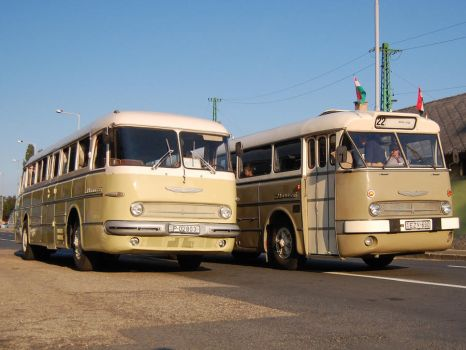 Ikarus 55 and 66 by Seth890603