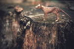 Day 218 - The Last Thylacine by MonsterBrand