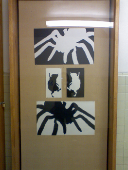 Cutouts- Hedgies n Tarantulas by chaoticdreamer
