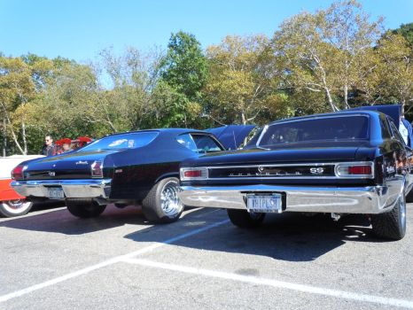 Two Chevelles For The Price Of One by Brooklyn47