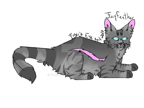 100 Day WC Challenge: Jayfeather by Tigerpool