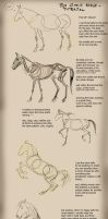 Horse Tutorial by theOvercoat
