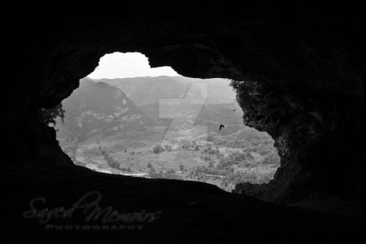 The Window 3 by wR7