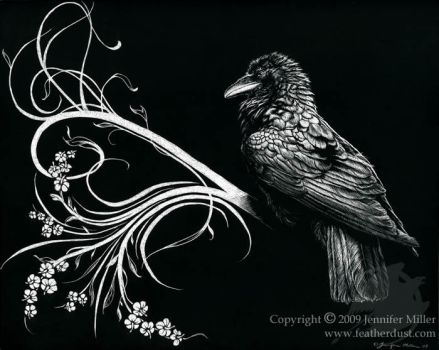 Raven Synthesis by Nambroth