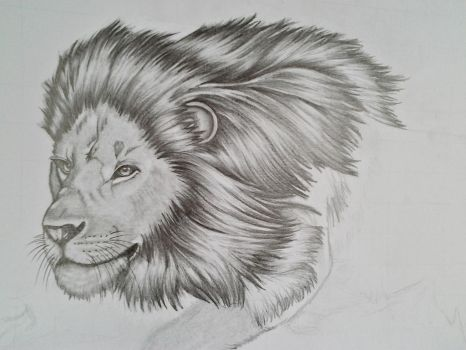 WIP lion by r-a-ven