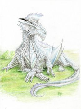 ToF Contest Entry: Argyros by ThunderboltFire