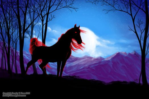 Claudra's Horse by Dorothy-T-Rose