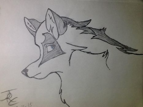 I made another wolf by djpon3432
