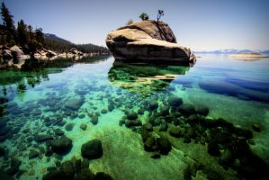 Bonsai Rock at Tahoe by sellsworth