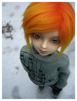.Orange Jack Frost. by KeiCaiAyan