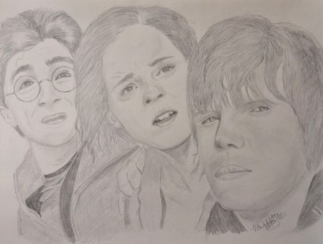 Harry Hermione Ron by UtterlyAbsurdBella