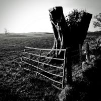 Gate + Tree-stump by Coigach