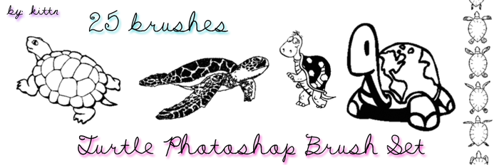 Turtle Photoshop Brushes by punkdoutkittn