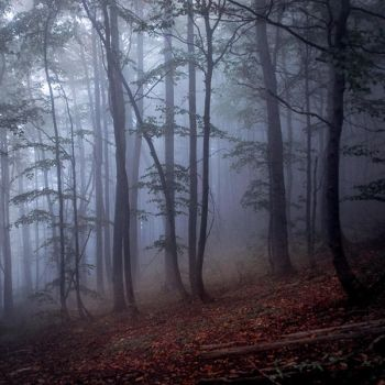 ...nothing but silence by wariatka