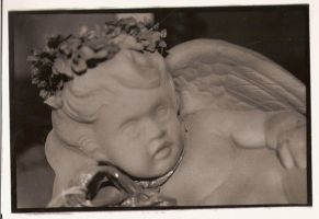 cherish the cherub by octowhat