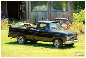 A Nice Mid 60's Ford Truck by TheMan268