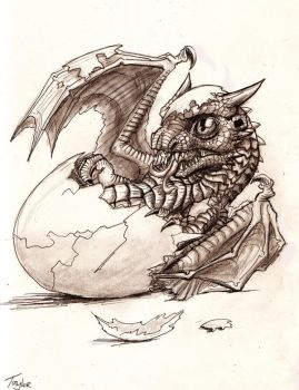 Hatchling by Ruth-Tay