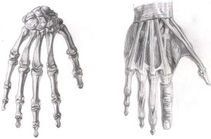 Hands by rrog