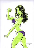 She Hulk Again by Scott Dalrymple by GordonWildhurst