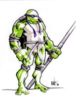Donatello_01 by BLACKBULLSEYE