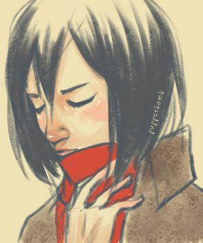 SNK: Mikasa by ahnline