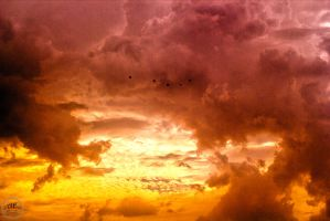 Feathered Messengers Through The Storm by JuiceMonkey610