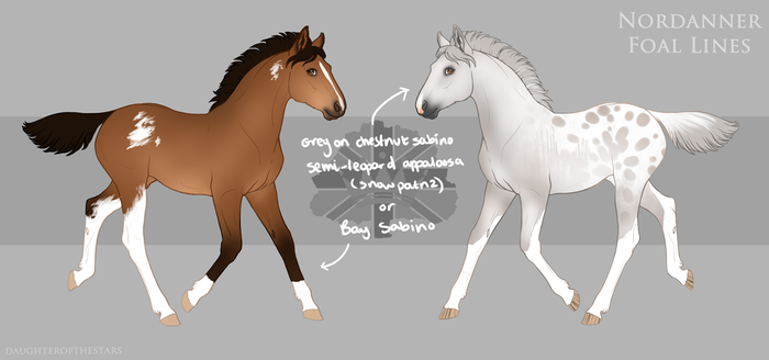 Foal design help by horsy1050