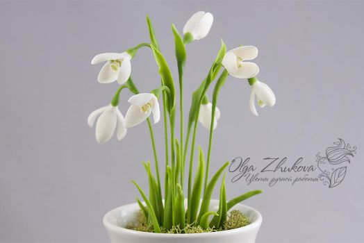 snowdrops. cold porcelain by polyflowers