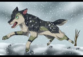 .:Pts. Com - Running in the Snow:. by LeaTenshi
