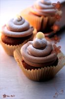 Chocolate Cup Cakes by akemiM