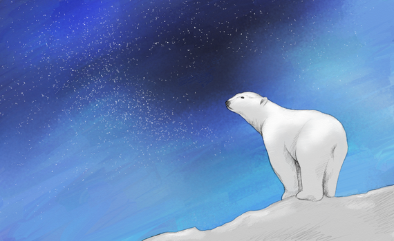 Polar Bear by shadow-over-water
