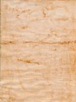 Weathered Paper 18 by DanteSangreal
