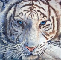 White Tiger by Catherine1992