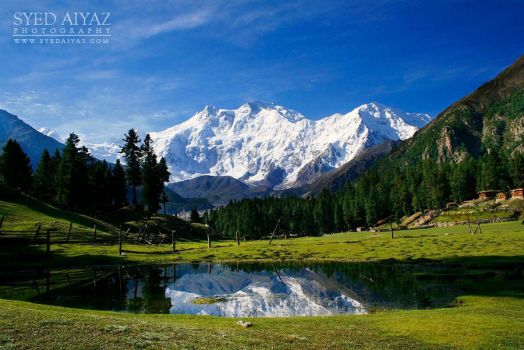 Fairy Meadows by muterattler