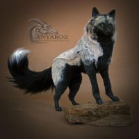 Silver Fox Room Guardian by AnyaBoz
