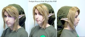 TP: Link Wig and Hat WIP by Ratsukorr
