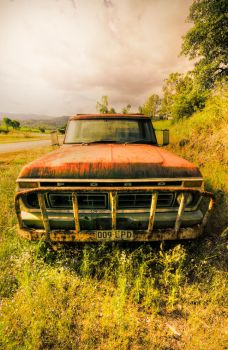 Ford by Antoine-G