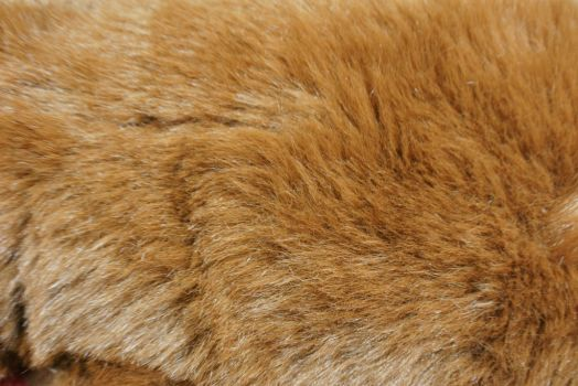 The coloration is brown, light brown, a combination of dark brown with lighter shades of brown on the sides, or silvery. The fur is very durable and makes great casual wear for both men and women. Sheared Beaver is plucked and sheared to a soft, velvety pile.