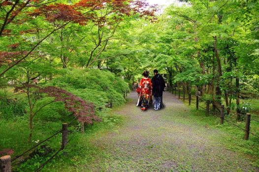 Just Married in Kyoto by AndySerrano