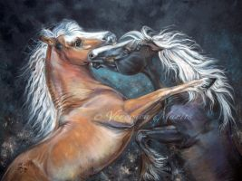 Playing horses by VeronikaFrizz
