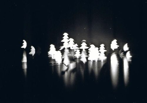 christmas trees by flxt