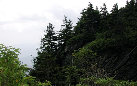 Grandfather Mountain by lao